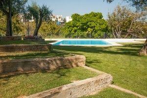 Marbella International University Centre Pool