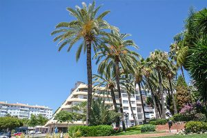 Cost of Living Marbella, Accommodation